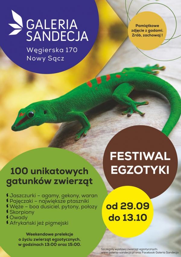 festiwal egzotyki - wystawa zwierząt egzotycznych